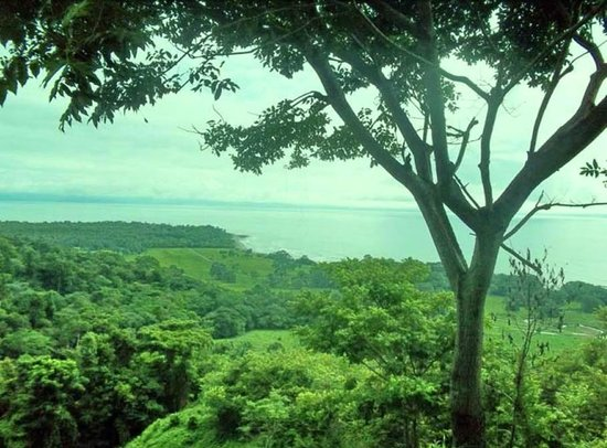 Rancho Tropical: Panoramic view