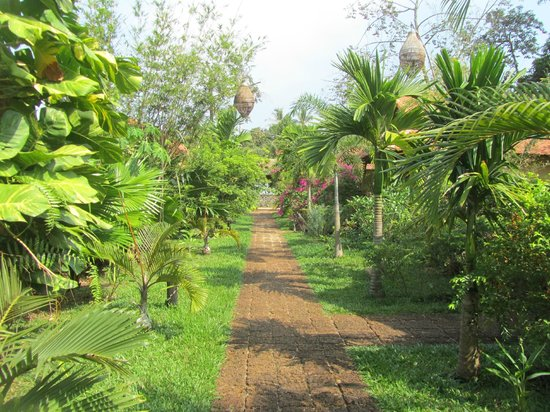 Kimly Lodge : Path to the bungalows
