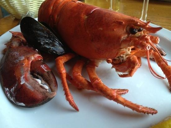 Grannan's Seafood Restaurant: 1+ lb lobster