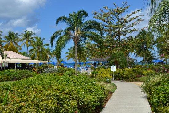 St. James's Club Morgan Bay: Walking towards pool/beach