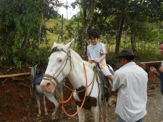 Brisas del Nara: Alfonso helping saddle up