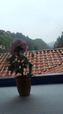 Tierra Viva Cusco Saphi: Vue