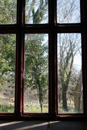 Tyneham: Looking through the classroom window.