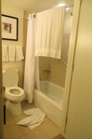 Hilton New Orleans Riverside: the bathroom