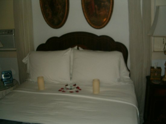 Sabal Palm House Bed and Breakfast Inn: Michaelangelo room