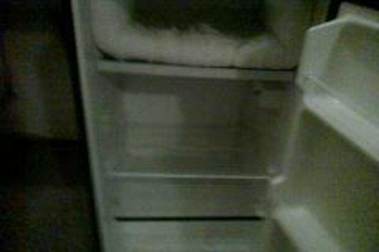 Anaheim Executive Inn & Suites: Dirty Frozen Fridge