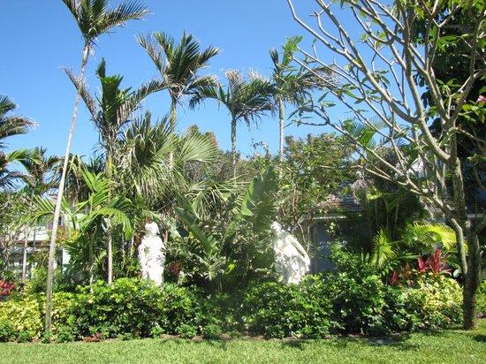 Sandals Royal Bahamian Spa Resort & Offshore Island : Environnement très beau