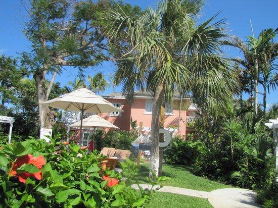 Sandals Royal Bahamian Spa Resort & Offshore Island : Piscine près de notre chambre