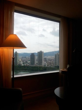 Lotte Hotel World: the view