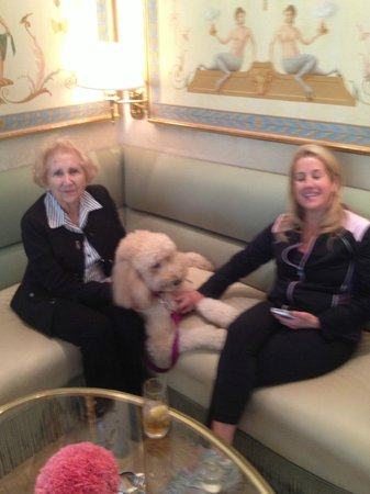 The Peninsula Beverly Hills: Quality Dogs Welcome