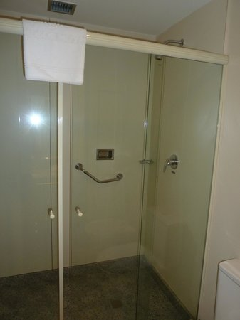Windsor Asturias Hotel: Shower