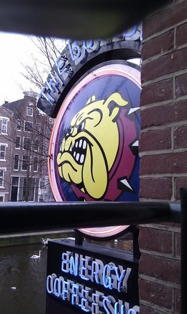 The Bulldog Hotel 사진