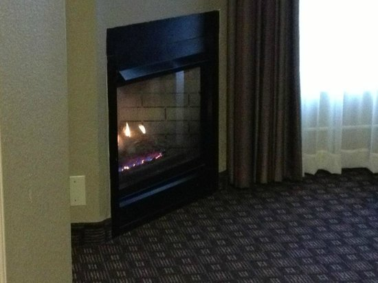 Homewood Suites by Hilton Austin-Arboretum / NW : Nice fireplace that made the room feel homey.