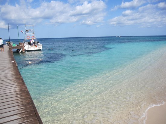 Occidental Grand Cozumel: beach and dive boat