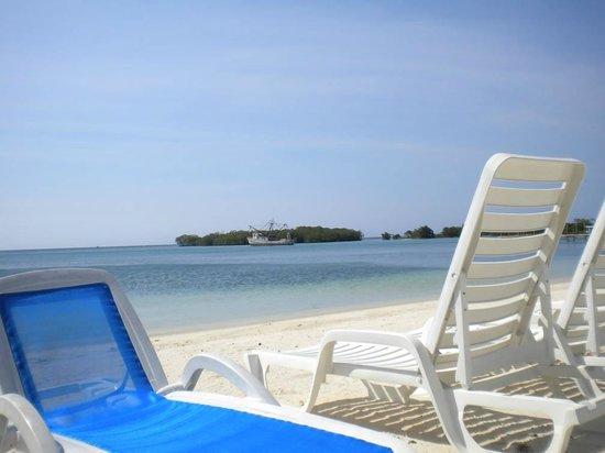 Turquoise Bay Dive & Beach Resort: Pic tomada desde  la habitacion me encanto esta