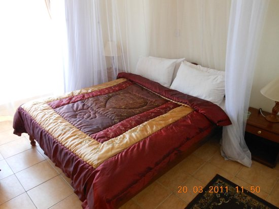 Ole Dume Serviced Apartments Hotel: Bedroom, mosquito nets there but could use replacement