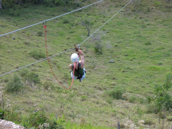 ‪Zip Line at Monkey Jungle‬