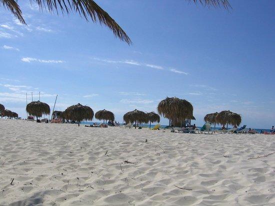 Sirena Beach : Sun, sand.....fantastic