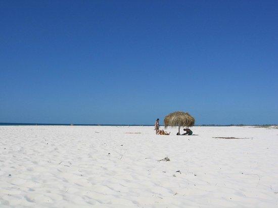 Sirena Beach : Beautiful beach at Playa Sirena