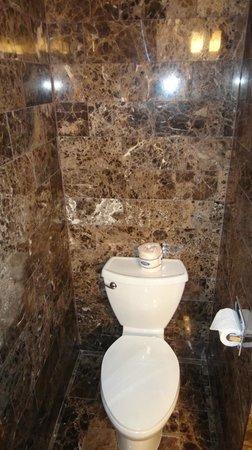 Grand Sierra Resort and Casino: Toilet