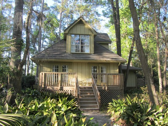 White Oak Conservation Center: The Tree House   5BR/5bath