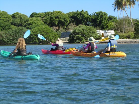 Barefoot Travelers Rooms: Kayak trip to Monkey Island