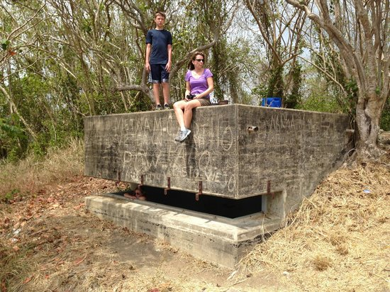 Barefoot Travelers Rooms: WWII bunker at Nature Preserve