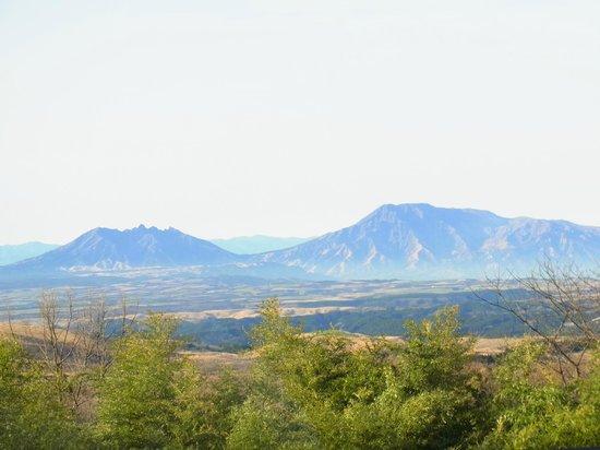 Senomoto Kogen