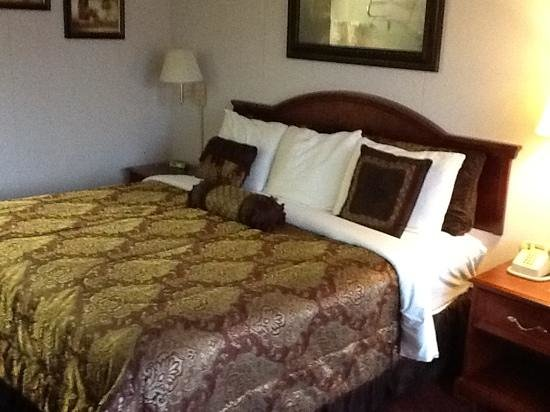 Branson Yellow Rose Inn and Suites: King sized bed