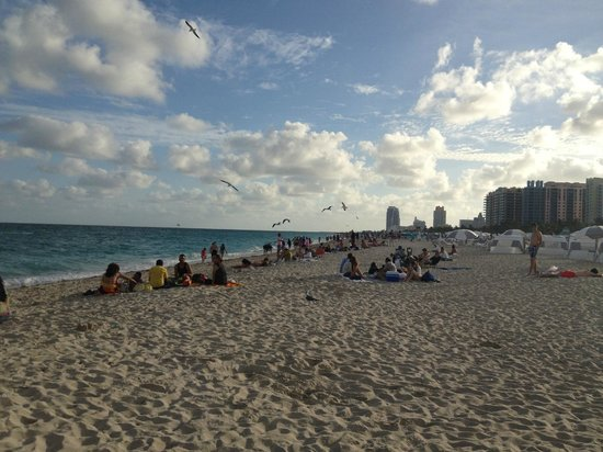 Dream South Beach: playas cercanas del hotel