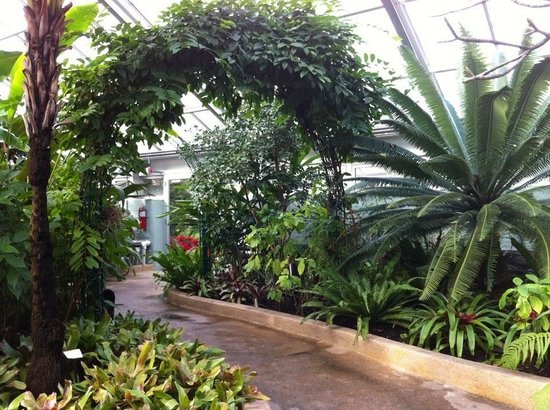 Photo of Howard Peter Rawlings Conservatory in Baltimore, MD, US