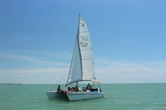 Off the Hook Adventures: Sailing of Marco Island after shelling for sanddollars and shells