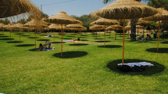 Things To Do in La Marquesa Golf, Restaurants in La Marquesa Golf