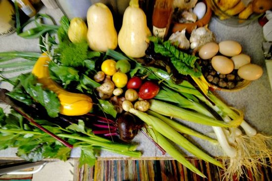 Karamea Farm Baches : Winter Vegetables from our Permaculture Farm