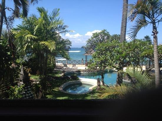 Ida Beach Village : the view from the lumbung room