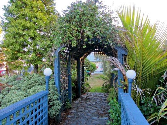 Jade Court Motor Lodge: view of the garden
