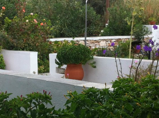 Morfeas Pension: Garden