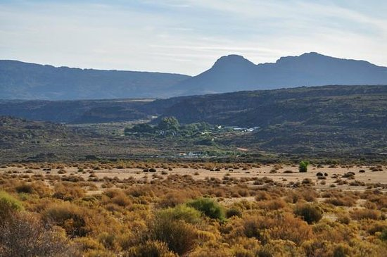 Bushmans Kloof Wilderness Reserve & Wellness Retreat: View back to the lodge