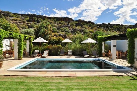 Bushmans Kloof Wilderness Reserve & Wellness Retreat: heated pool