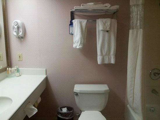Best Western Plus Suites Hotel: Nice bathroom