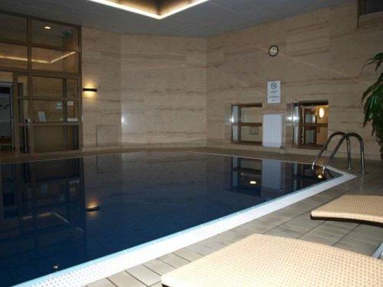 Adina Apartment Hotel Budapest: Poolareal