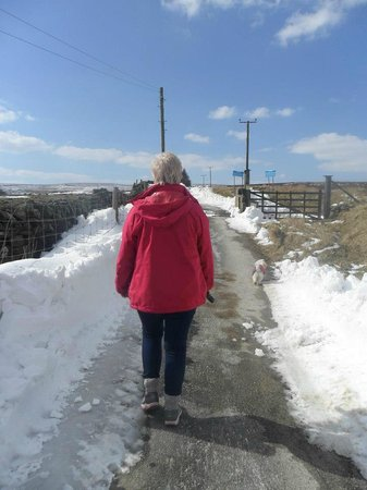 Westfield Lodge: The long and winding road