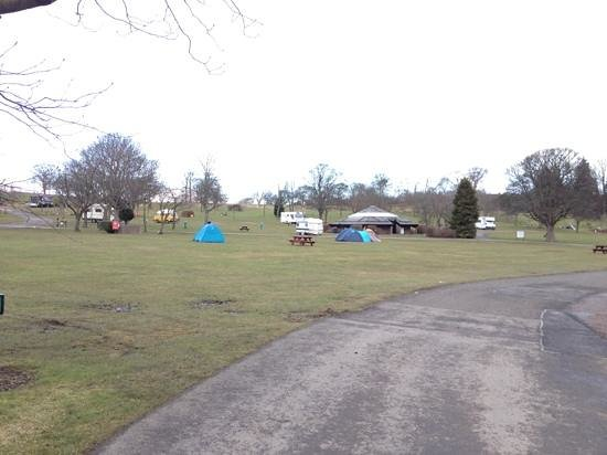 Mortonhall Caravan and Camping Park: the brave few on one if the pitching areas