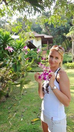 La Mer Samui Resort : Орхидея