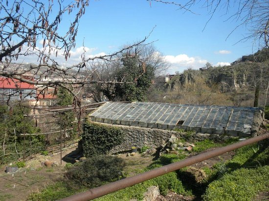 National Botanical Garden of Georgia: another closed on weekends green house at TBILISI BOTANICAL GARDEN