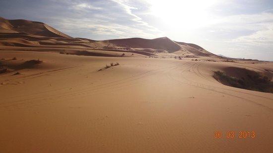 Riad Nezha: Dunes
