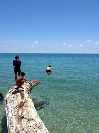 Palawan Mangrove Resort: The beach