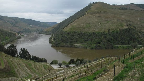 Quinta do Pego: landscape