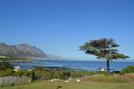 Hermanus Dorpshuys照片