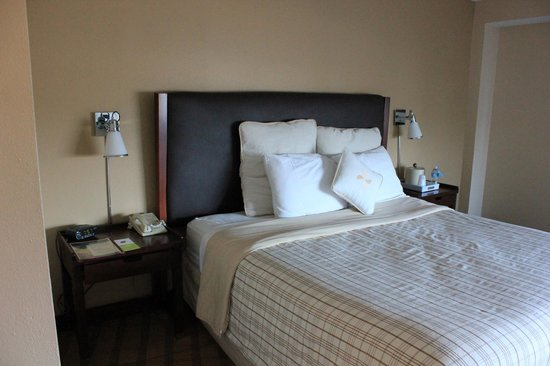 Four Points by Sheraton Orlando Studio City Hotel: King bed
